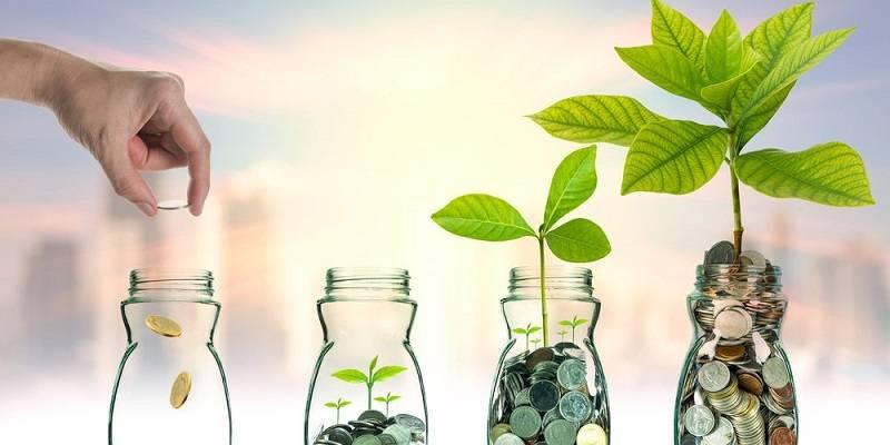 Secretele investitiilor cu sume mici